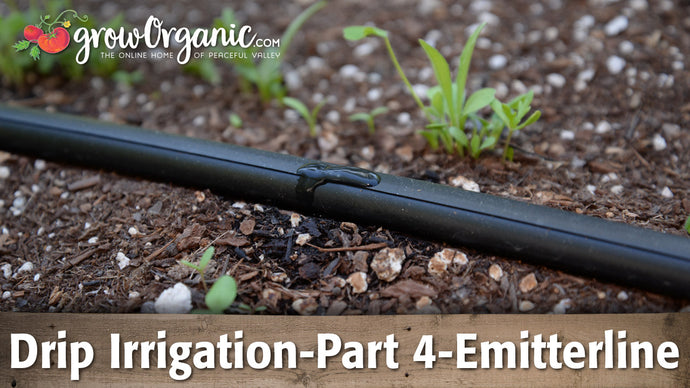 Drip Irrigation–Part 4–Using Emitterline in Your Garden and Landscape