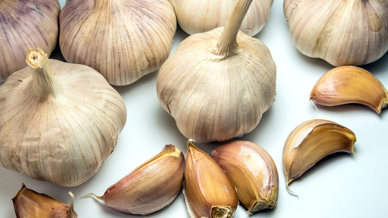 How to Store and Preserve Garlic