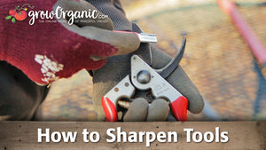 Sharpening Tools -- Pruners, Loppers, Shovels & More