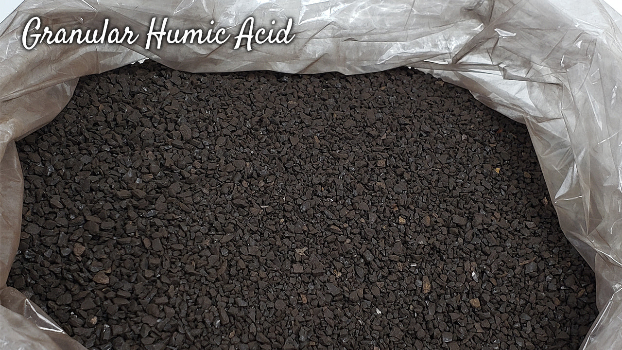 How to Use Soil Amendments-Humates, Humic Acids and Humus