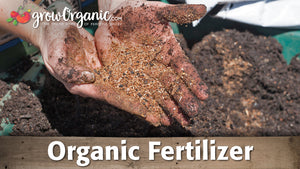 Organic Fertilizer & Fertigation