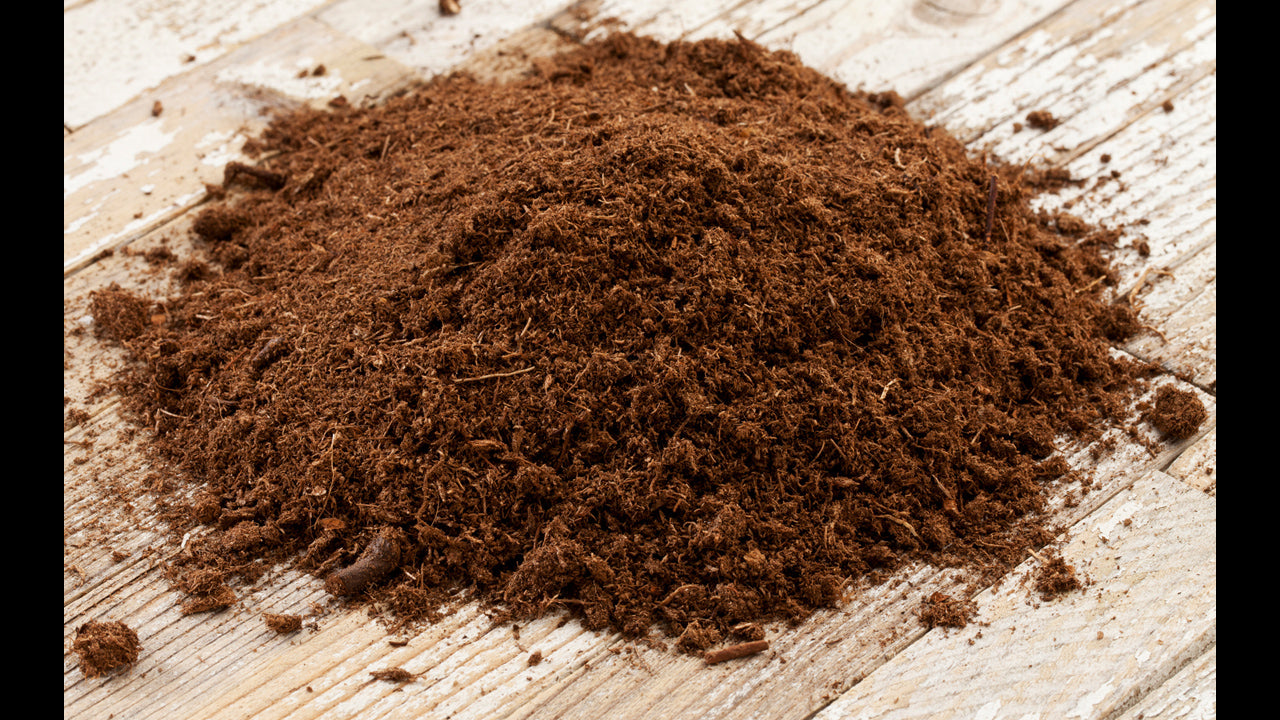How to Use Soil Amendments-Sphagnum Peat Moss