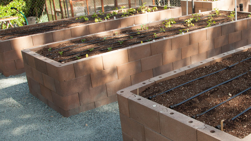 How to Design a Raised Bed