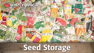 Seed Organization and Storage