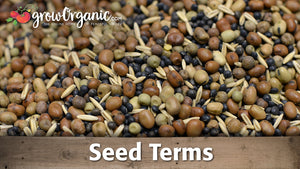 Seed Terms