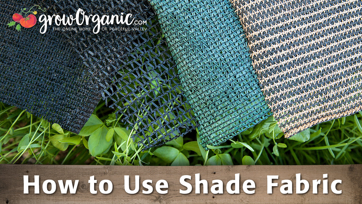 How to Use Shade Cloth & Protect Your Plants from the ...