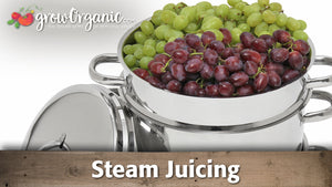 Steam Juicing