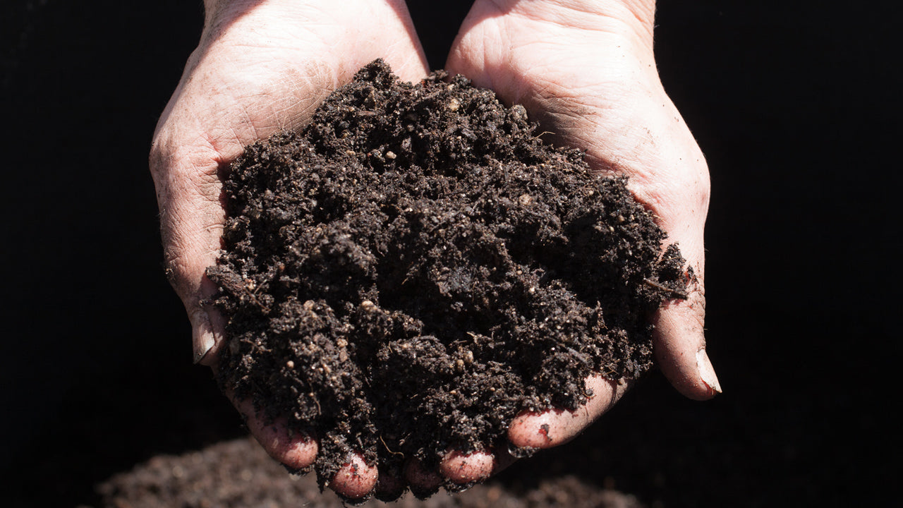 Protecting Your Topsoil from Erosion