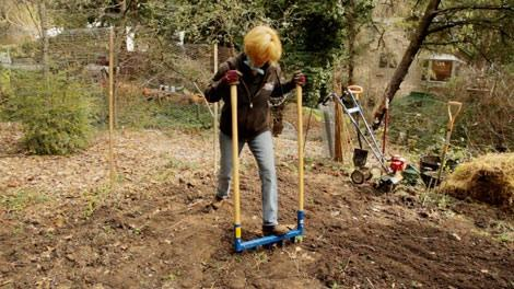 Tips Tools For Your First Vegetable Garden Organic Gardening