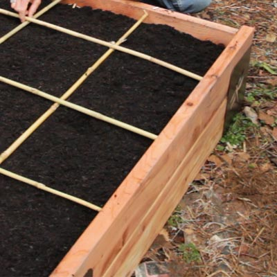 raised bed for good drainage