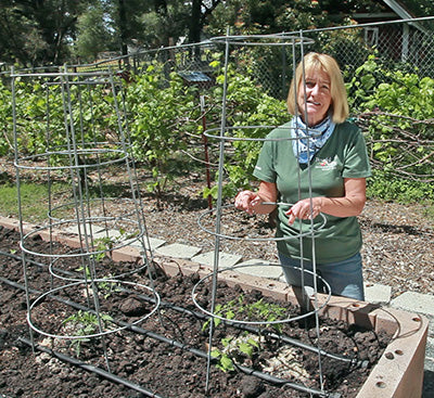 Tricia with some tomato cages