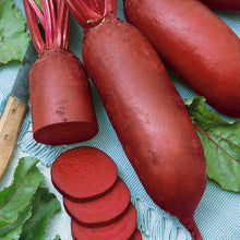 Load image into Gallery viewer, Organic Beet, Cylindra