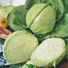 Load image into Gallery viewer, Organic Cabbage, Golden Acre