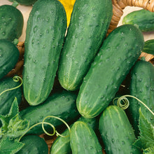 Load image into Gallery viewer, Organic Cucumber, Homemade Pickles