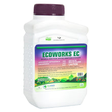 Load image into Gallery viewer, Ecoworks EC (16 oz)