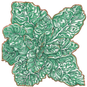Organic Lettuce, Buttercrunch-drawing