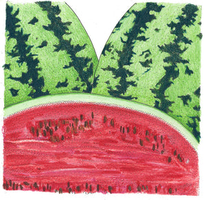 Organic Watermelon, All Sweet-drawing