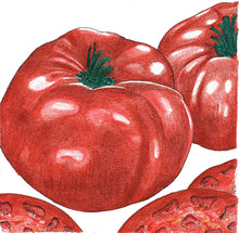 Load image into Gallery viewer, Organic Tomato, Brandywine