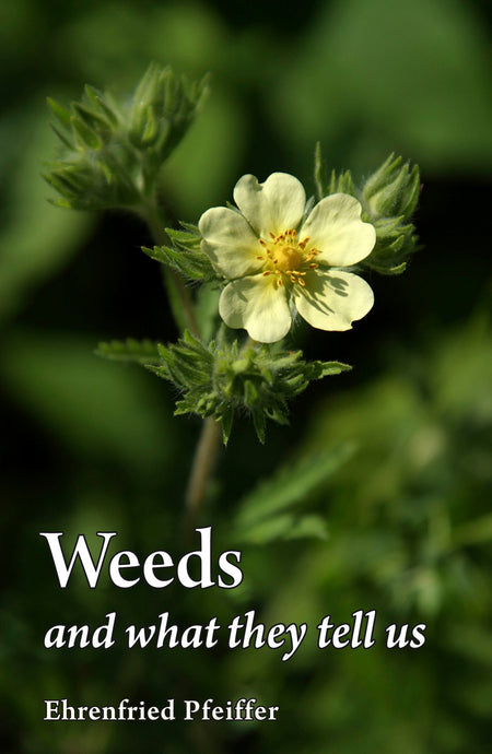Weeds & What They Tell
