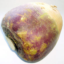 Load image into Gallery viewer, Organic Rutabaga, Joan (1 oz)