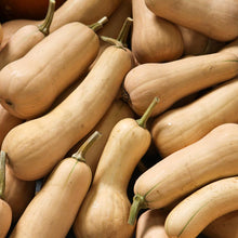 Load image into Gallery viewer, Organic Squash, Winter Harvest Mix (1/4 lb)