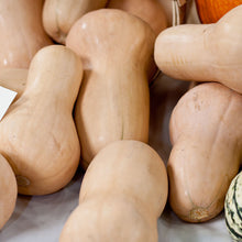 Load image into Gallery viewer, Organic Squash, Winter Butternut (1/4 lb)