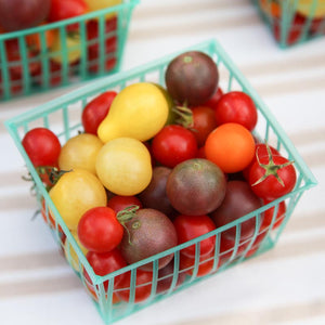 Organic Cherry Tomato, Rainbow Mix (1 oz)
