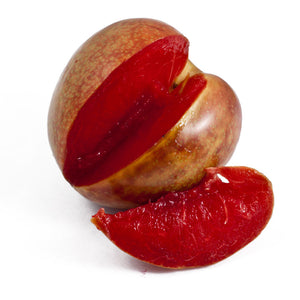 Flavor Supreme Pluot® Tree (Semi-dwarf)