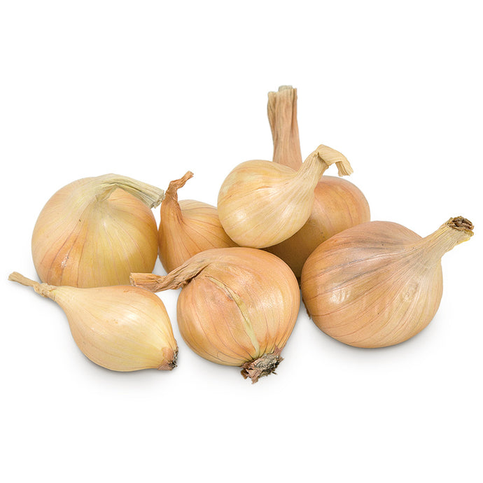 Conventionally Grown Dutch Yellow Shallots (lb)