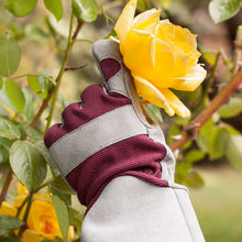 Load image into Gallery viewer, Professional Rose Gloves - Burgundy (Medium)