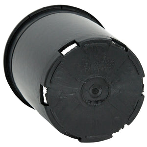 Black Plastic Pot (1 gallon size)