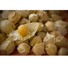 Load image into Gallery viewer, Organic Tomatillo, Pineapple (Ground Cherry)
