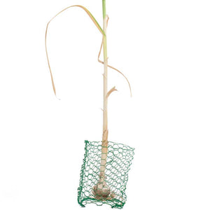 Root Guard Gopher Basket Mini (6/pk)