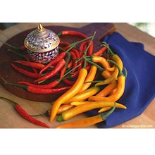 Load image into Gallery viewer, Renee's Garden Pepper Chile True Thai Orange Full Moon & Red Vesuvius