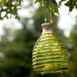 Glass Wasp Trap