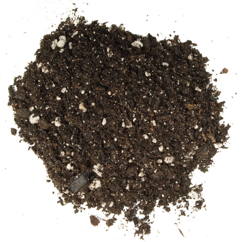 Foxfarm Ocean Forest Potting Soil 1 5 Cu Ft Grow Organic