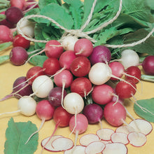 Load image into Gallery viewer, Organic Radish, Easter Egg Mix (1/4 lb)