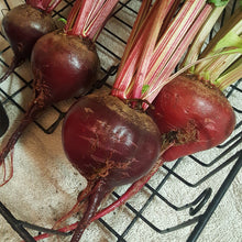 Load image into Gallery viewer, Organic Beet, Early Wonder Tall