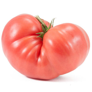 Organic Tomato, Prudens Purple-close up
