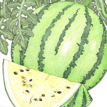 Load image into Gallery viewer, Organic Watermelon, Early Moonbeam