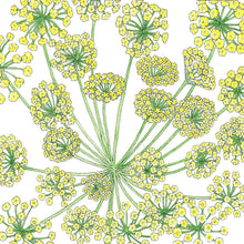Load image into Gallery viewer, Organic Dill, Mammoth