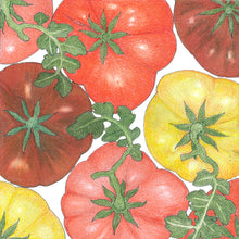 Load image into Gallery viewer, Organic Tomato, Brandywine Mix