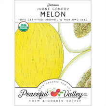 Load image into Gallery viewer, Organic Melon, Jaune Canary