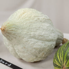 Load image into Gallery viewer, Organic Squash, Winter Blue Hubbard (1/4 lb)