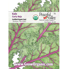 Load image into Gallery viewer, Organic Kale, Curly Roja
