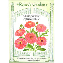 Load image into Gallery viewer, Renee's Garden Cutting Zinnia, Apricot Blush