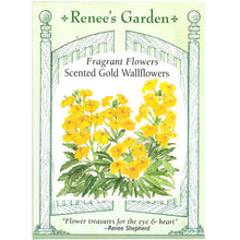 Load image into Gallery viewer, Renee's Garden Wallflower Scented Gold