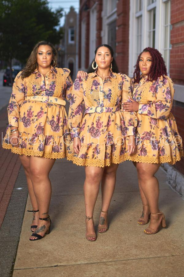 Fall in Love Button Up Skater Dress-Dress-Latiste-[plus_size]-Honey's Child Boutique