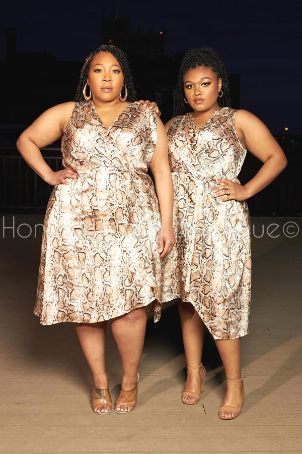 Hiss Me Snake Print Fit & Flare Dress-Dress-Davi & Dani-[plus_size]-Honey's Child Boutique