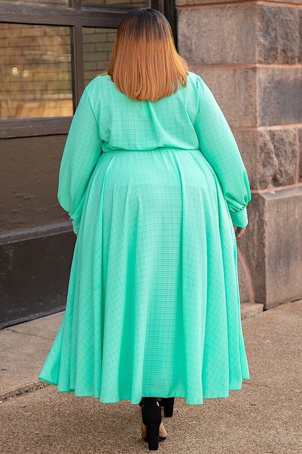 Mint Condition Chiffon Maxi Dress